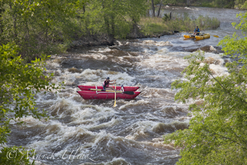 whitewater rafters - Filter Plant Run of Poudre River