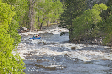 whitewater kayakers - Filter Plant Run of Poudre River
