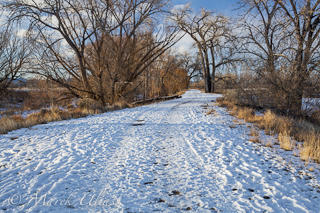 winter road - Riverbend Ponds Natural Area