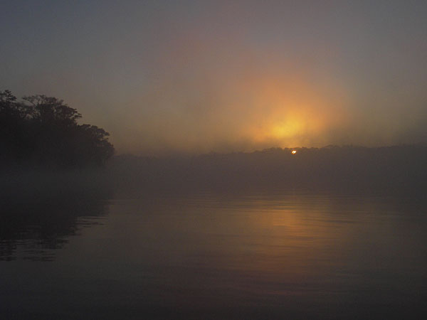foggy sunrise over Suwannee River, Florida