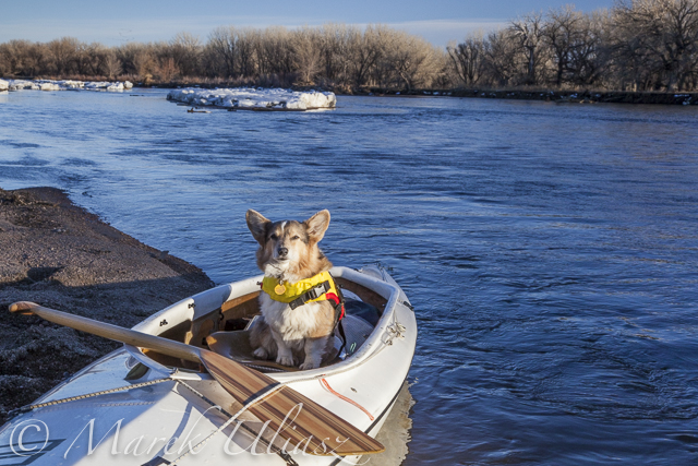 Scouting and Paddling the South Platte River after 2013 Flooding