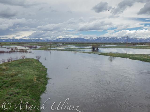 Grizzly Creek near Walden, CO
