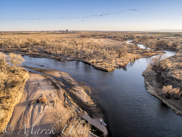 Paddling and Flying with Geese at St Vrain and South Platte Confluence