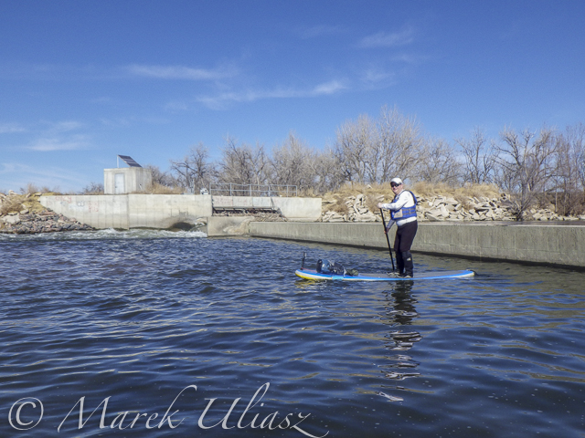 paddling South Platte River by SUP