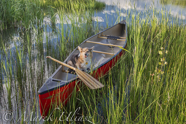 Old Town Penobscot canoe