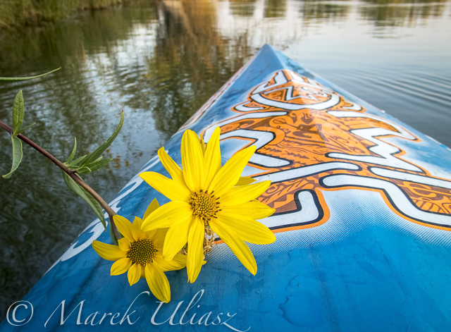 Late Summer Stand Up Paddling with Olympus TG-5 Camera
