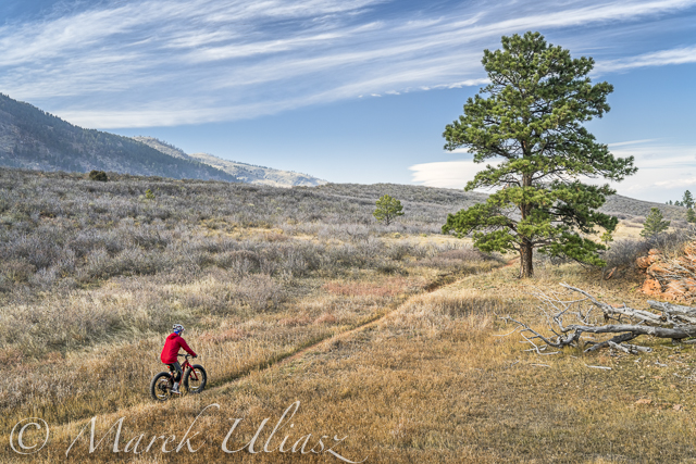 fat bike Lory State Park